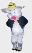 Queenie Piggy mascots for rental